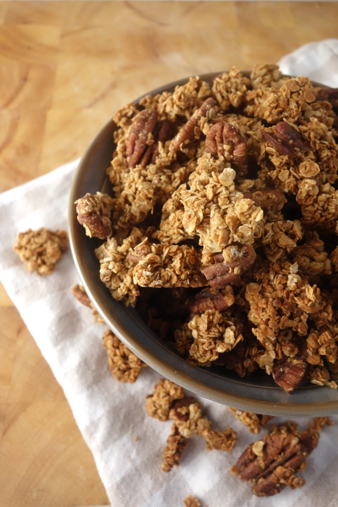 Cinnamon Maple Pecan Granola - A Dash of Ginger