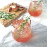 Rhubarb Elderflower Gin Cooler